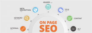 Search Engine Optimization Services offered by iTransparity Digital Marketing Agency
